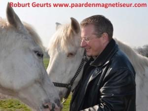 http://www.paardenmagnetiseur.com/